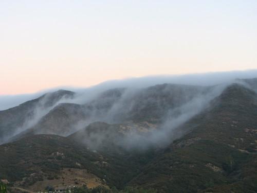 fog drifts in