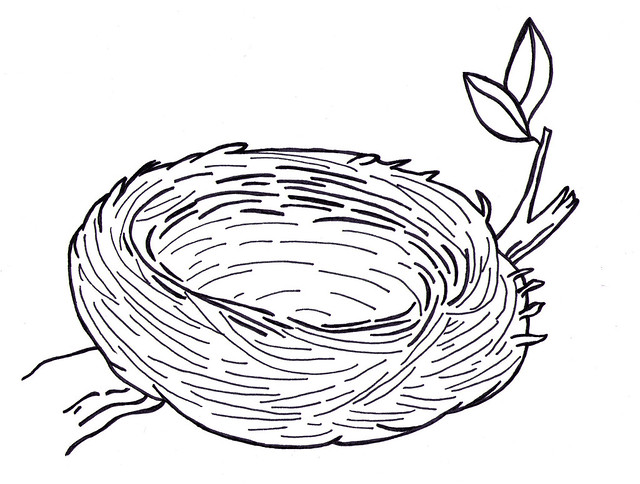 nest coloring pages Empty Bird S Nest Coloring Page | Coloring Pages nest coloring pages