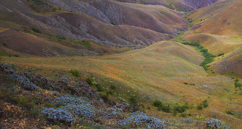 A valley of colours by Irene-rilian