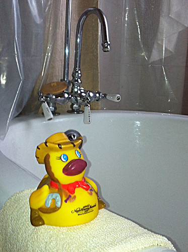 western rubber duckie at Nagle Warren Mansion  Bed & Breakfast in Cheyenne, Wyoming