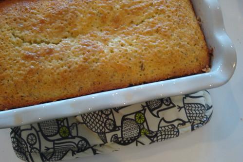 Olive oil lemon poppyseed cake