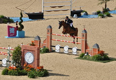Olympic Showjumping