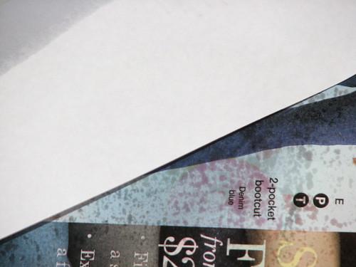 AP - Victorian Specimen Plaque 05