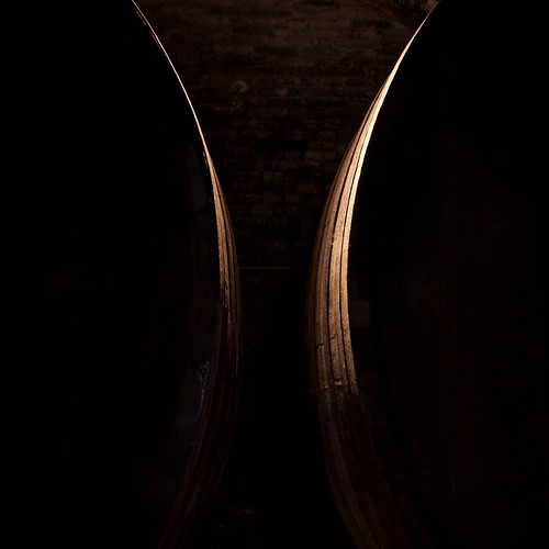 Wine Barrels Explored 81