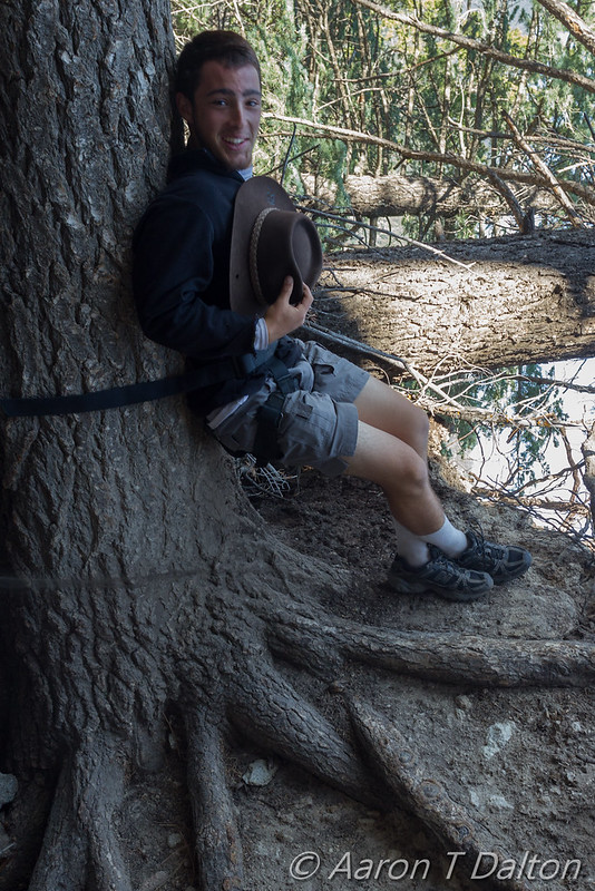 Just Leaning on a Tree
