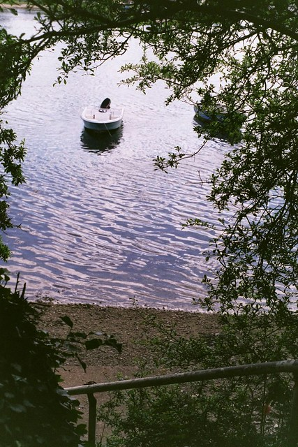 A boat on a river seen through a hedge