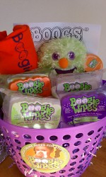 boogie-wipes-prize-basket