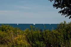 Distant Sails