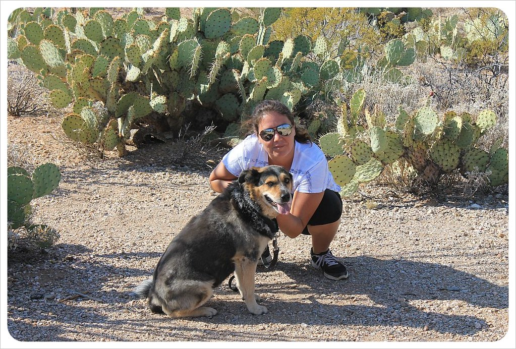 jess and millie in saguaro national park