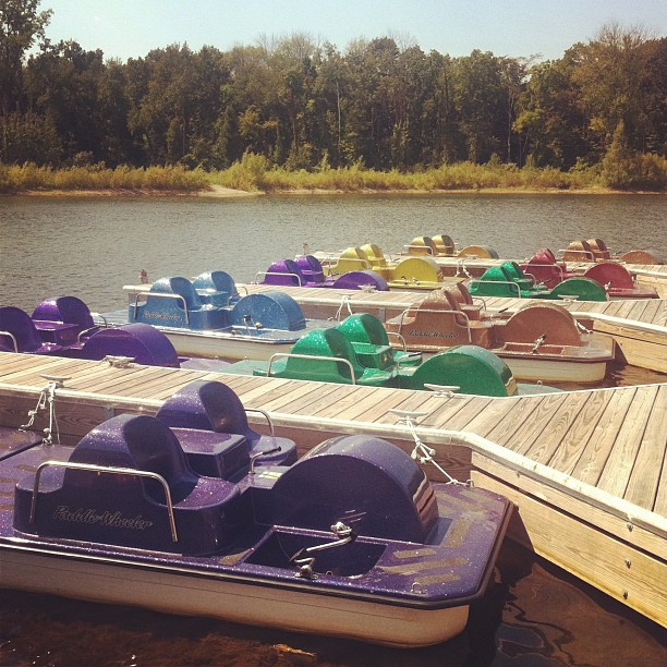 Paddleboating on the sparkliest boats I've ever seen in my life. #summertime #thingsbright