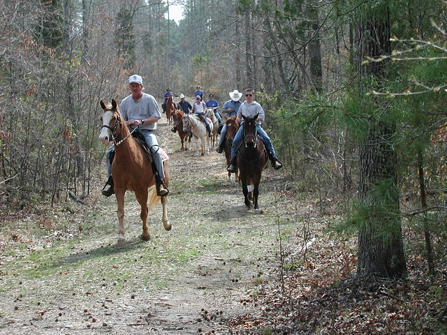 Staunton River State Park Equestrian trails and Campground