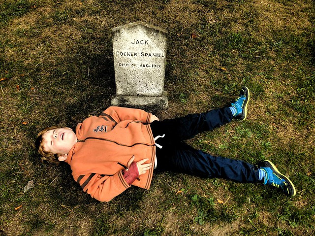 A grave situation
