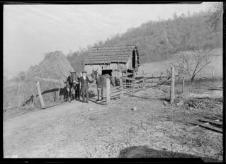 Gaines McGlothin on his farm, R. F. D. #2, Kingsport, Tenn. Like many of the Kingsport Press workers, McGlothin is a farmer as well as an industrial worker, November 1933