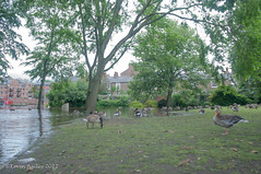 York In Flood July 2012-59