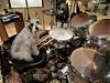Babygirl on drums