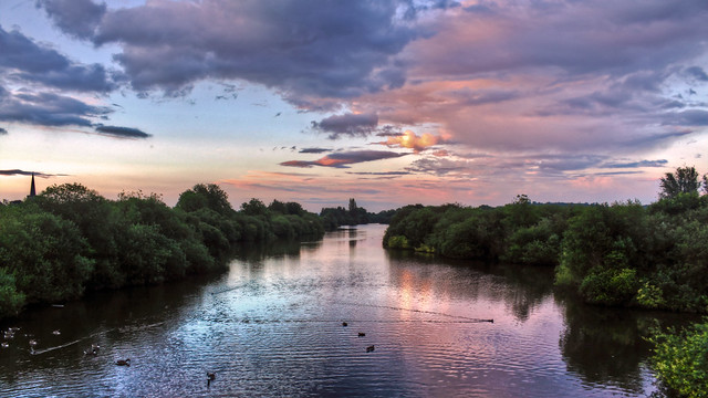 0294 - England, Nottingham, Attenborough Nature Reserve HDR