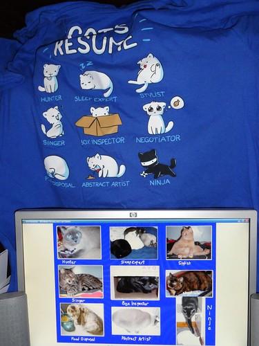 Amanda Hart's cats match this shirt