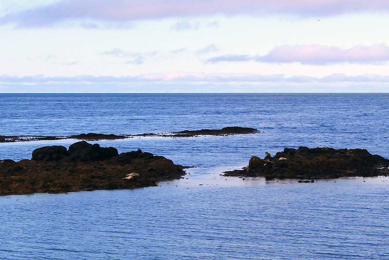 S Ef Bf Bdjours  Jours Islande