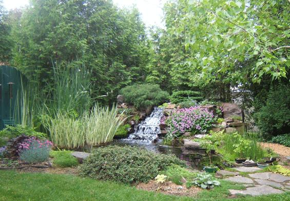 Jardin d 39 eau avec cascade poissons et plantes flickr for Cascade d eau jardin