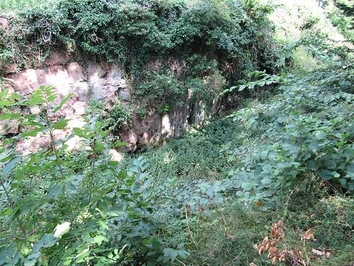 ruine du chateaux frankenbourg 170