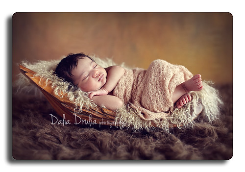 newborn photographer ny