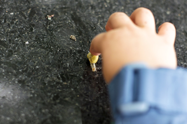 Un escargot avec une grosse main de Manu