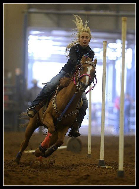 0728_ABFE_4H_HorseShow0402