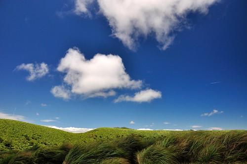 磺嘴山大草原