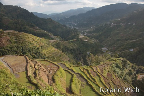 rice terrace philippines terraces banaue viewpoint batad luzon philippinen