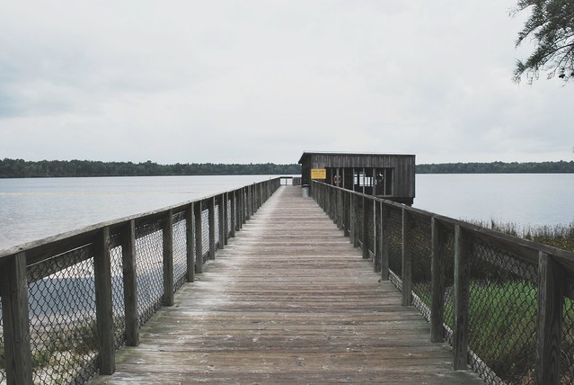 jones lake state park dock