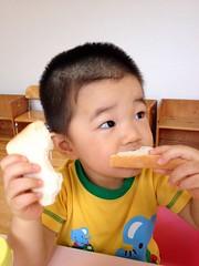 パン食うとらちゃん (2012/8/11)