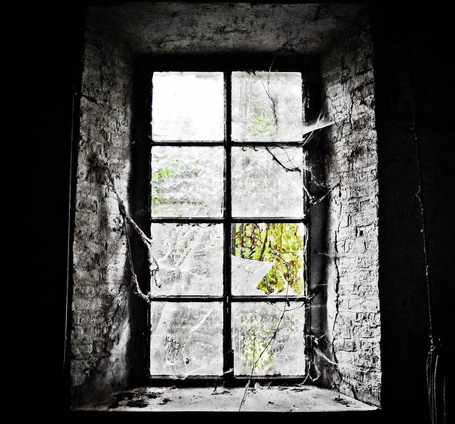 La finestra sul cortile flickr photo sharing - Finestra sul cortile ...
