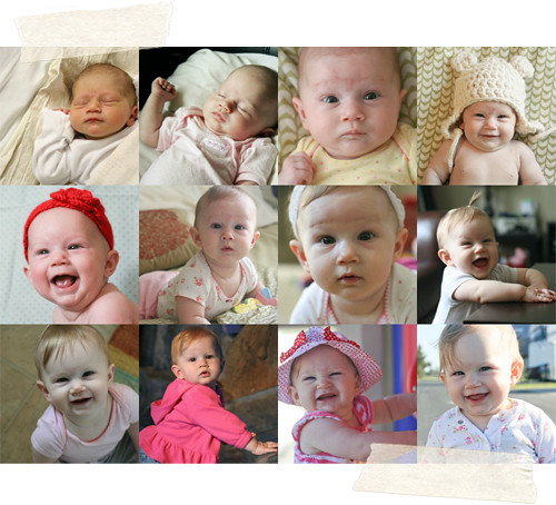 Months 0-11 of Eisley!