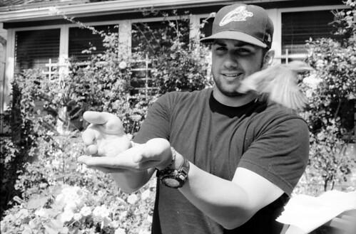 Bob and a Baby Hawk