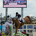 Small photo of Edwina Tops-Alexander (AUS) and Itot de Chateau-2576