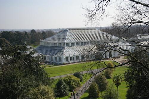 Kew_Gardens-012