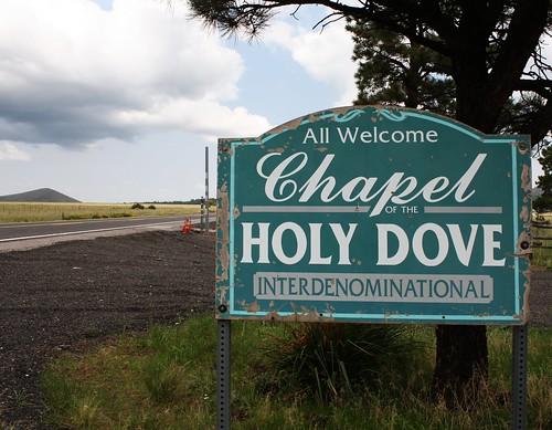 Holy Dove