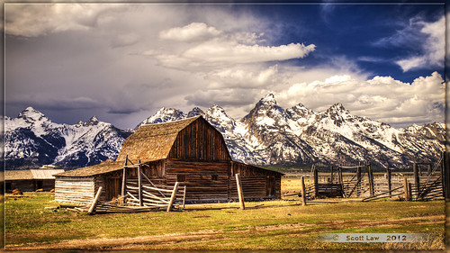 Barn and Bison by Just Used Pixels