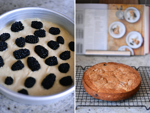 Buttermilk Cake with Blackberries — Whisks and Whimsy