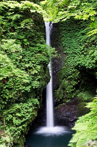 岩室の滝 2012.6.26-2
