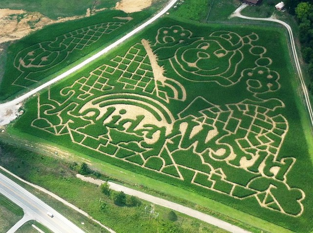Corn Mazes - weekends in October