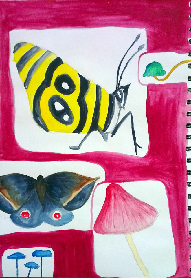 Nature Study_24.08.2012