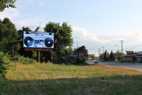 Albany Billboard Art Project 2012 - Julia Cocuzza (18)