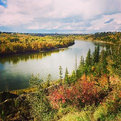 Edmonton, I don\'t get out and explore you often enough! :maple_leaf::chestnut::evergreen_tree::sunny::fallen_leaf: - - - - #yeg #exploreedmonton #explorealberta #explorecanada #travelalberta #edmonton #rivervalley #fall #autumn #river #pretty #nature