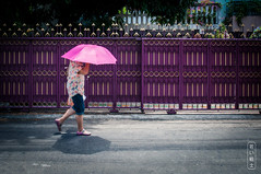 Pink Umbrella #1304