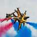 RIAT 2012 - Black Eagles by benjamincclark