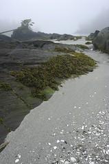Lucy Island