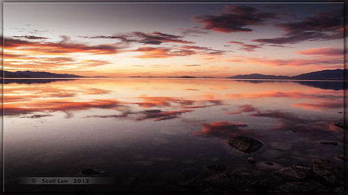 sunset lake reflection water dusk insects bugs antelopeisland greatsaltlake brineflies