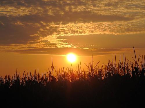 sunset canon powershot g12 amishcountry smack53