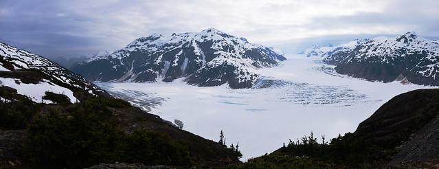 Panorama: Salmon Glacier